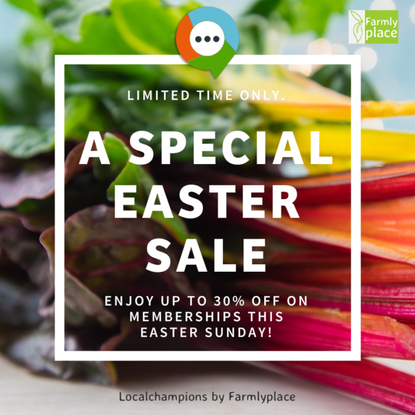 Colorful Swiss Chard Special Easter Sale